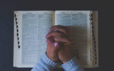Warum Bibellesen? | Wie kann ich die einzelnen Bücher verstehen?