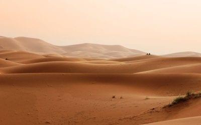 Wüste | Zwischenland: Halt finden in Zeiten des Umbruchs