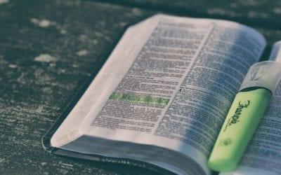 Bibelstudium – freie Zeiten nutzen um näher an Gottes Herz zu kommen