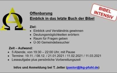Bibelkurs zur Offenbarung   Ü 30   ab 19.11.2020